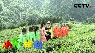 《快乐体验》 20190704 走进诗歌之乡|CCTV少儿