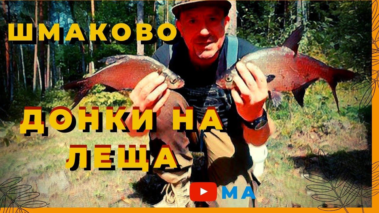 Рыбалка в Шмаково .Донки на леща. Донки на леща с кормушкой.