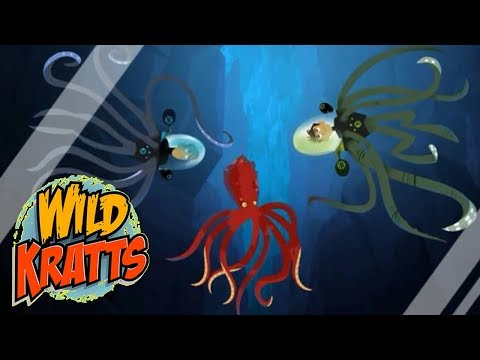 Wild Kratts PBS - Octopus Wildkratticus - Wild Kratts 2018 Full Episodes 15