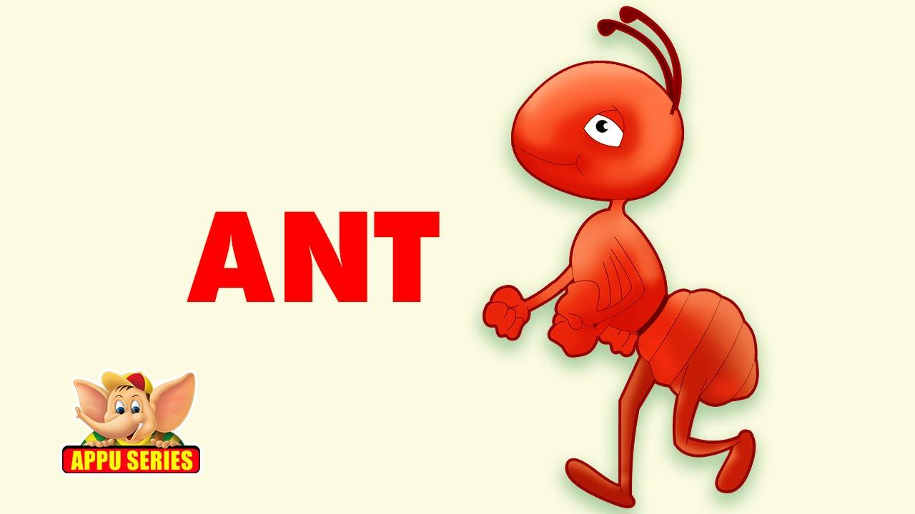 дерево, муравей на английском картинка ржавую