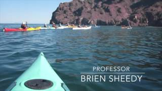 Video - Baja Sea Kayak Trip 2017