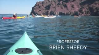 Video - Baja Sea Kayak Trip 2017