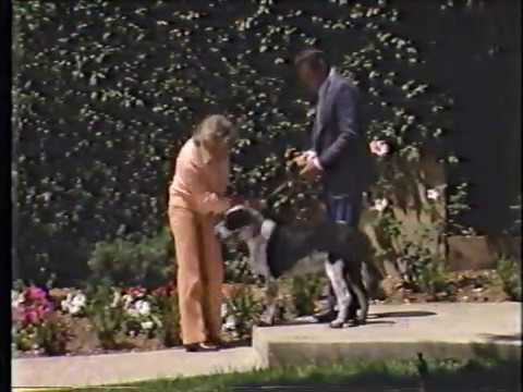 Doris Day: Doris Day's Best Friends with Earl Holliman and Steve Feather - 1985