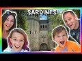 Ref:pc46ooGJ6yM Sardines in a real castle! | hide and seek | we are the davises
