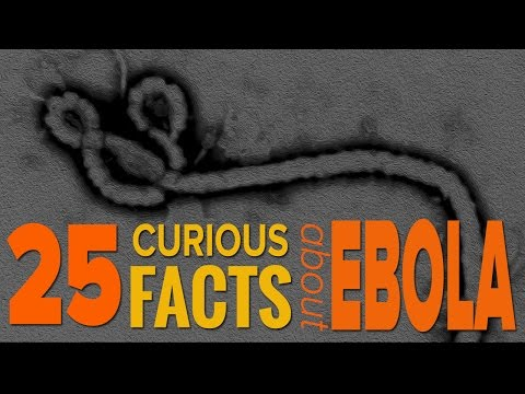 25 Curious Facts About Ebola You Should Know