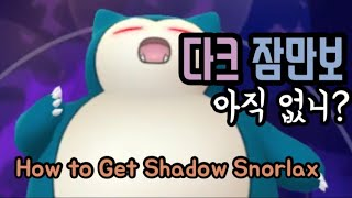 [포켓몬고] 다크 잠만보 잡는 법! How to Get Shadow Snorlax Pokémon Go Korea