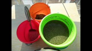 Как я заготавливаю семена салата