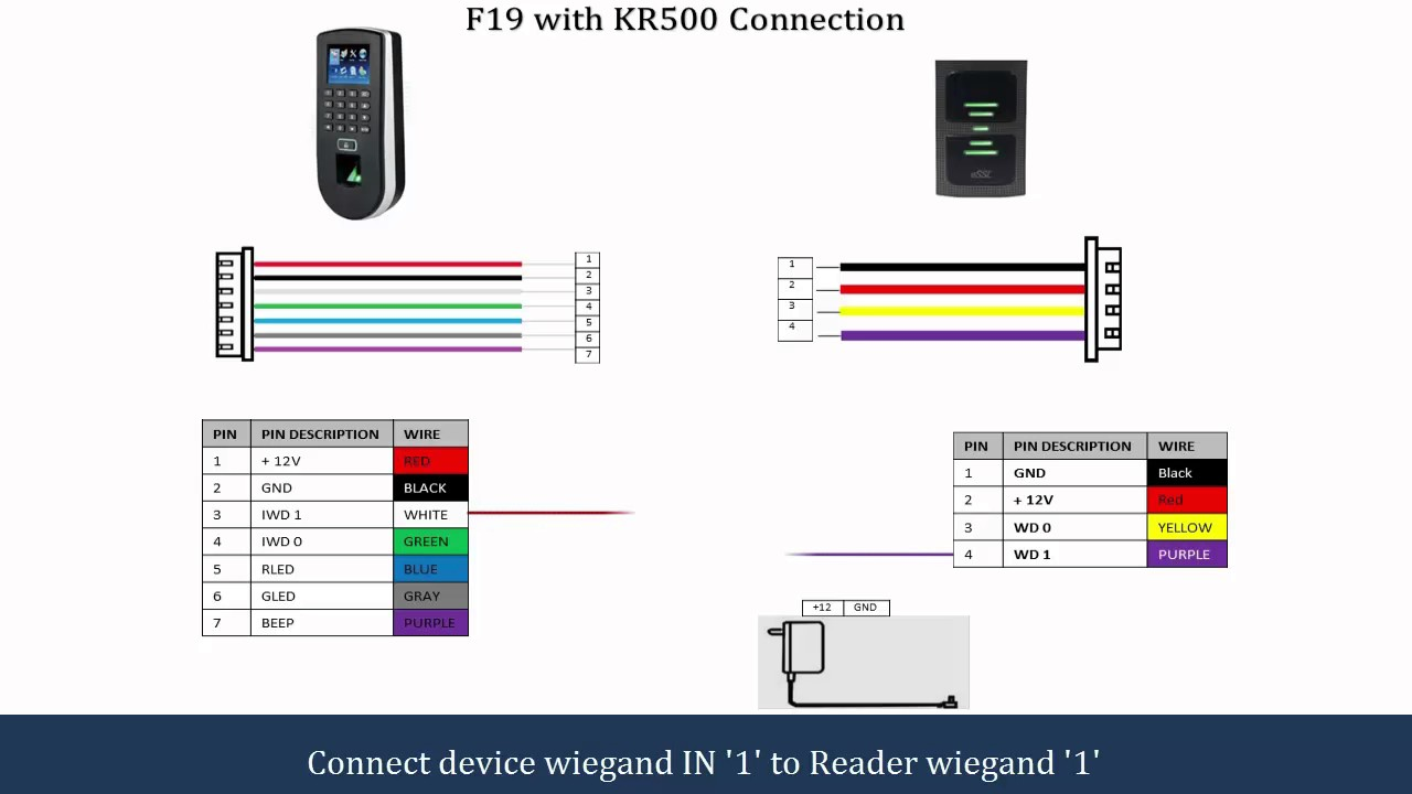 F19 Connection Diagram