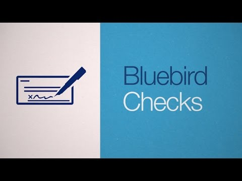 bluebird-by-american-express-is-a-financial-account-with-flexible-features-&-tools:-bluebird-checks