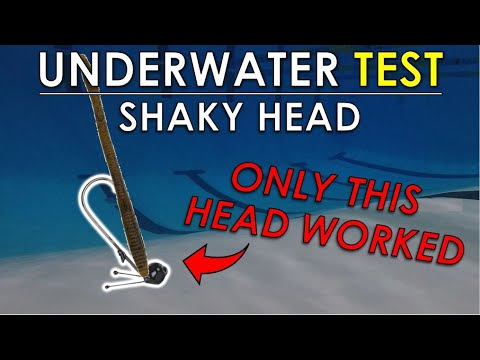 Testing Stand Up Shaky Heads In Deep Pool | Finesse Worm Tips And Techniques