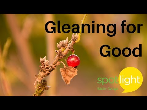 """""""Gleaning for Good"""" - practice English with Spotlight"""