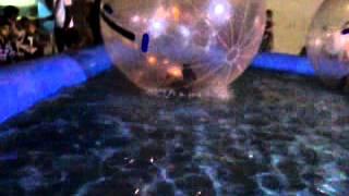 video 2011 11 06 20 00 09