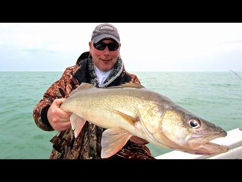 Jigging For Lake Erie Walleye
