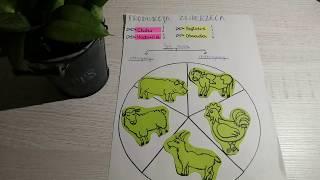Chów i hodowla zwierząt gospodarskich (Rolnictwo) ;D