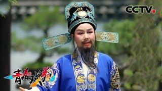 越剧平调里的戏韵江南 《青春戏苑》 20190618 | CCTV戏曲