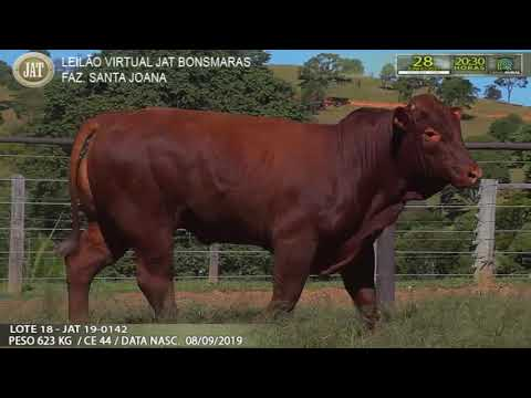 LOTE 018