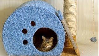 Как сделать домик для кошки своими руками. Модный Домик Для Кошки !(Время сэкономить по-крупному! http://vid.io/xoDA Скидки в топовых магазинах! Повышенный кэшбэк! Призы на 1 000 000 рубле..., 2015-05-14T16:53:53.000Z)
