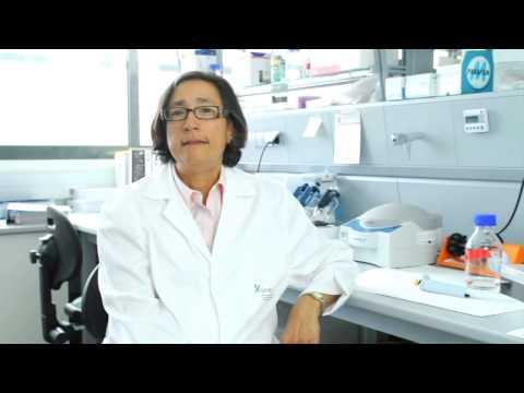 Genetics of Complex Diseases