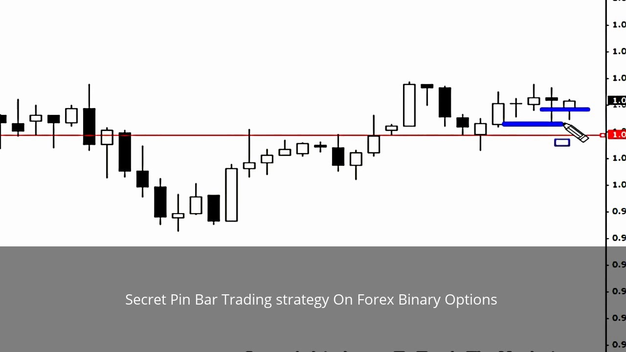 Pin bar binary options