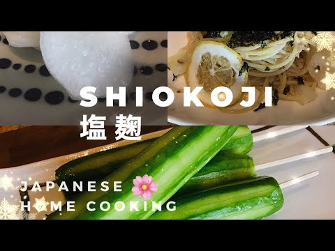 shio-koji,-塩麹:magical-japanese-seasoning