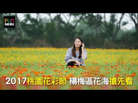 2017桃園花彩節 首場「楊梅區」搶先看