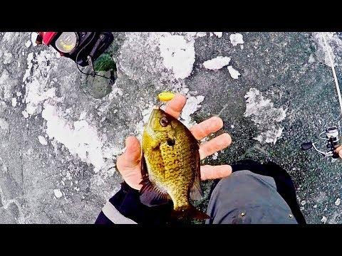 Ice Fishing Ultra Light Rippin Raps For Bluegills!
