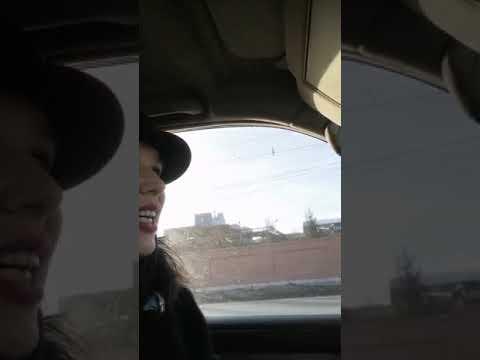 Маша едет в транспортную компанию