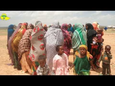 Community based environmental rehabilitation and livelihood improvement Somali region Ethiopia