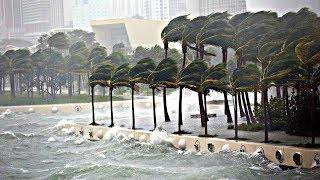 SURVIVING Hurricane Irma...and the AFTERMATH