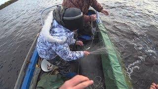 с сыном на промысловой рыбалке сетями