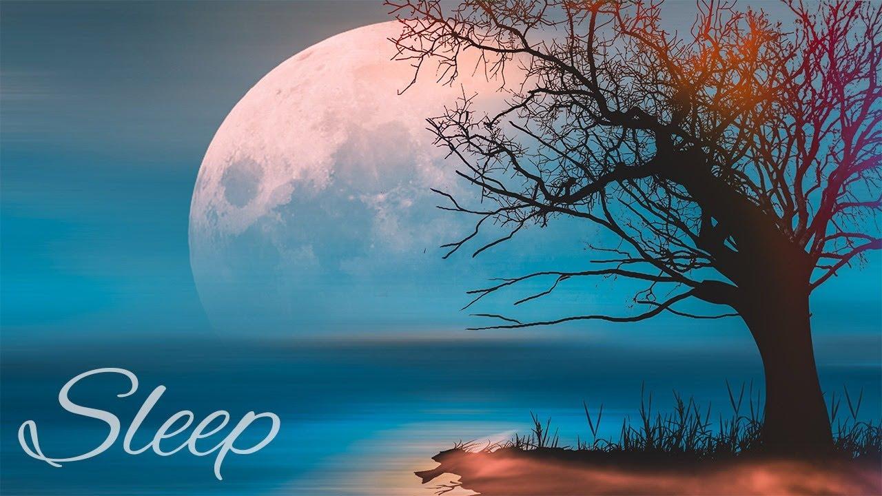 Bedtime Sleep Music 💤 Peaceful Sleeping 2