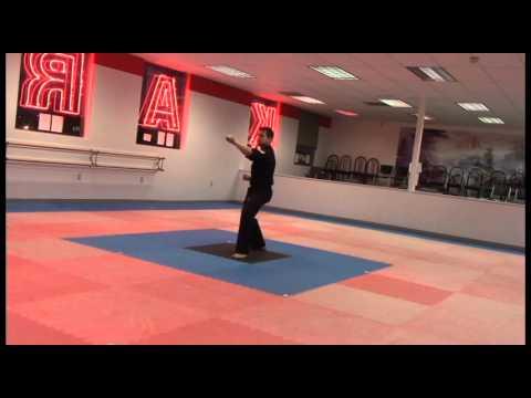 Orange to Green belt forms Pyung 1 & 2 Tang Soo Do