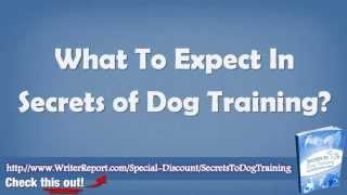 Secrets To Dog Training Reviews - Secrets To Dog Training Updated Review