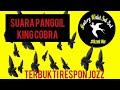 Suara Panggil Walet King Cobra  Mp3 - Mp4 Download