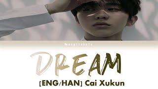 [HAN/ENG] 蔡徐坤 Cai Xukun - 梦 (Dream) 歌词版 Lyric Video