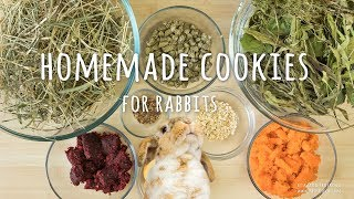 Healthy homemade cookies for rabbits