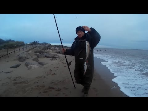 Codling, Whiting And Dabs - Sea Fishing On Skegness Beach