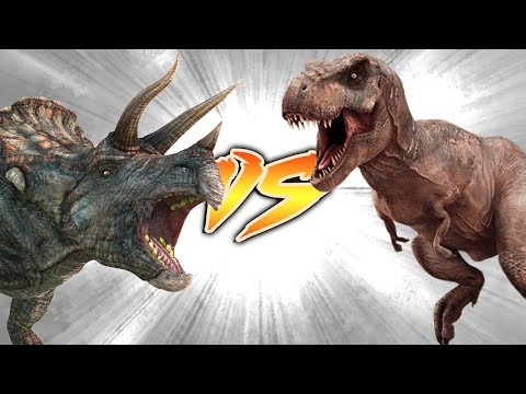 Triceratops VS T.rex [Who Would Win?]