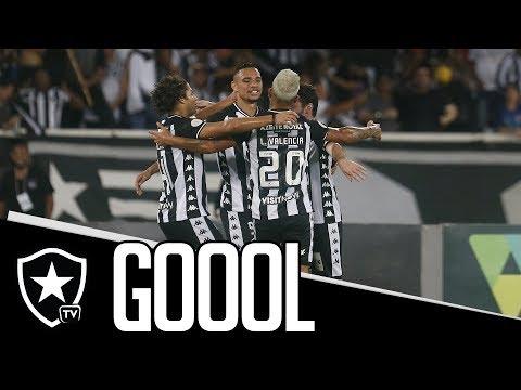 Gols | Botafogo 2 x 1 CSA | Brasileirão