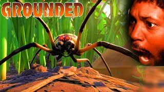 INSECTS HORROR GAME (yes, spiders too) | Grounded Gameplay