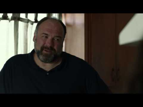 Enough Said (2013) Clip - Julia Louis-Dreyfus and James Gandolfini