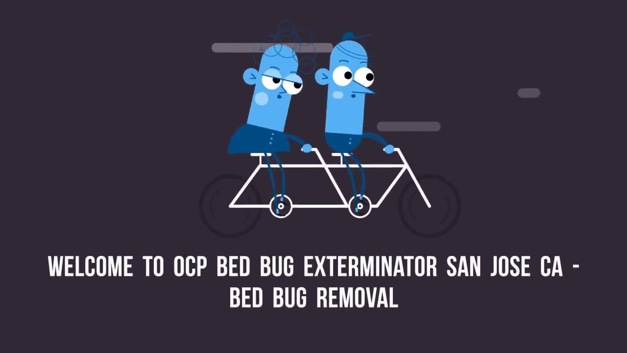 Certified OCP Bed Bug Exterminator in San Jose, CA