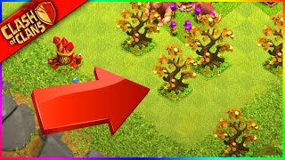 ONLY THE TOP 1% HAVE THIS MANY 'Money Trees!' in Clash of Clans