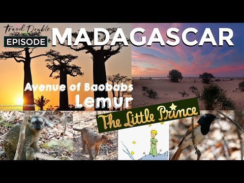 Madagascar for Avenue of the Baobabs | Travel Double