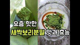 다양한 효능으로 핫한 새싹보리분말 맛이 궁금해서 농수산…