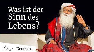 Was ist der Sinn des Lebens?