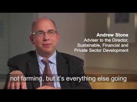 In Brief: Growing Rural Incomes through Non-farm Activities