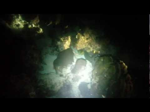 Horrible Hol Chan night dive in Belize - unedited - Part 1