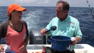 Bringing It Home - Chef John Folse - Fisherman's Stew