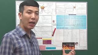 Thầy Lê Đăng Khương : Hướng Dẫn cách sử dụng sơ đồ tư duy mindmap